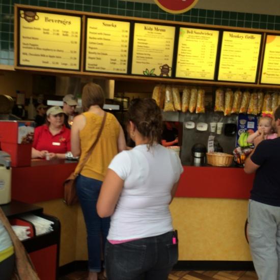 jungle cafe rosamond gifford zoo pocketsights