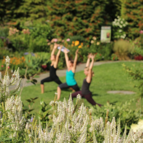 1 | 21 Things to Do at Cornell Botanic Gardens Before You Graduate ...