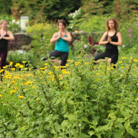 Tour | 21 Things to Do at Cornell Botanic Gardens Before You ...